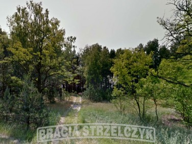 Działka budowlano-rolna Michałów