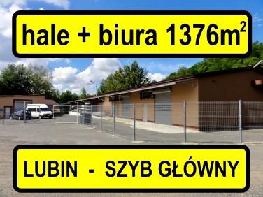 Budynek użytkowy Lubin sprzedaż