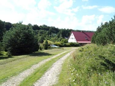 Dom Międzylesie