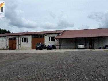 Budynek użytkowy Siemiatycze