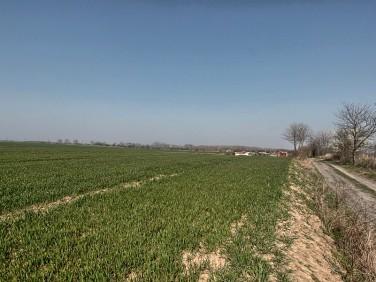 Działka rolna Siadło Górne