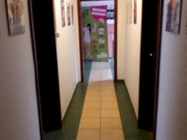 Budynek użytkowy Toruń wynajem
