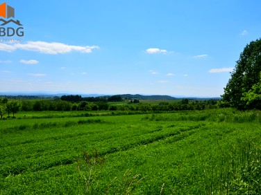 Działka rolna Czułów