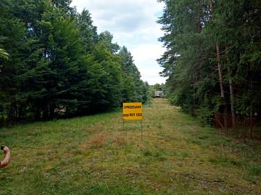 Działka rekreacyjna Koszelanka
