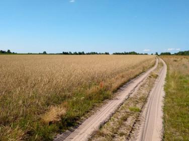 Działka budowlano-rolna Płasków
