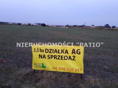 Działka przemysłowa Dąbrowa sprzedam