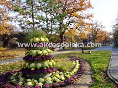 Lokal Konstancin-Jeziorna