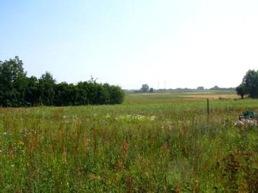 Działka rolna Baczyna