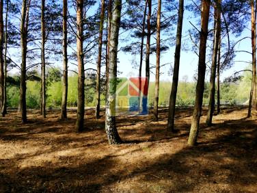 Działka budowlana Gostynin