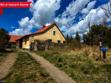 Dom Krawczyki