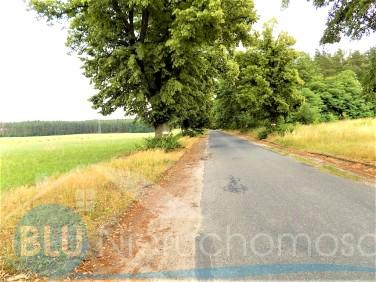 Działka siedliskowa Ostaszów