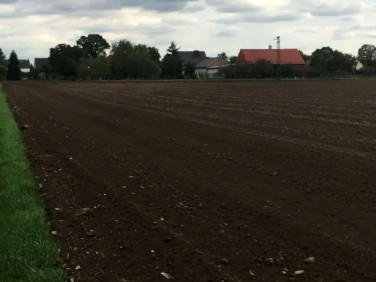 Działka budowlana Opole