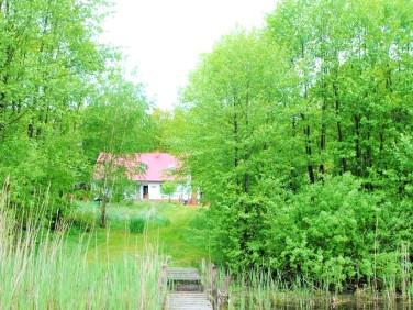 Dom tuczenko