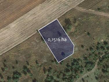 Działka Baczyna