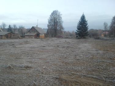 Działka siedliskowa Łużany
