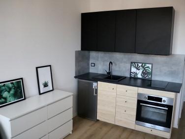 Mieszkanie Katowice wynajem
