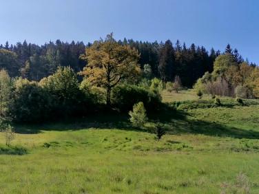 Działka budowlano-rolna Barcinek