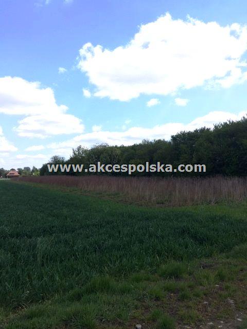 Działka rolna Warszawa