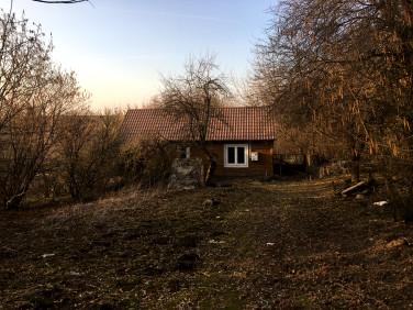 Dom Buszkowice