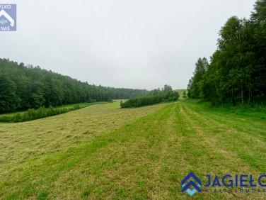 Działka rolna Borzestowo