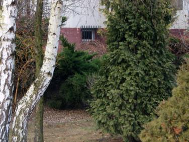 Mieszkanie Jabłonna