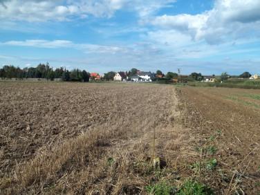 Działka siedliskowa Strzeganowice