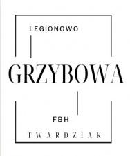 Legionowo Grzybowa