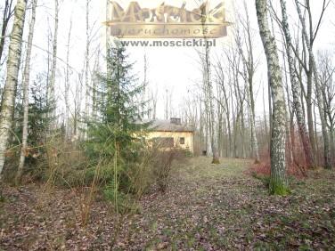 Dom Adamów-Wieś