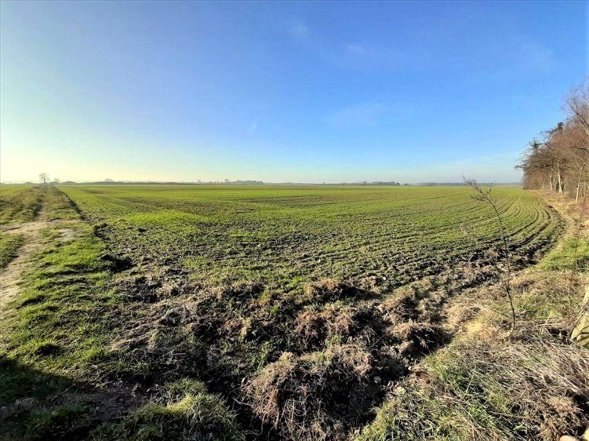 Działka rolna Dębnica