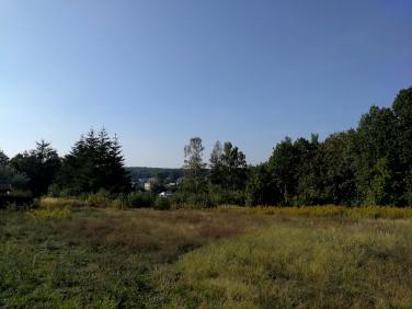 Działka Wisełka