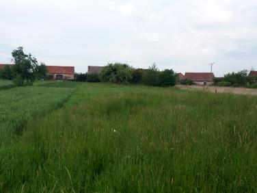 Działka budowlano-rolna Ciepielowice