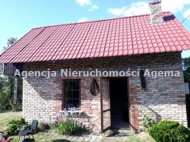 Dom Żuki