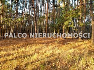 Działka budowlana Toruń sprzedam