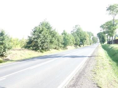 Działka Aleksandrów Łódzki