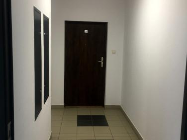 Pokój Piastów