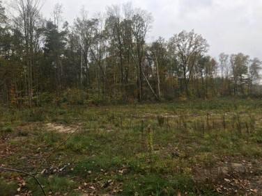 Działka budowlana Gliwice