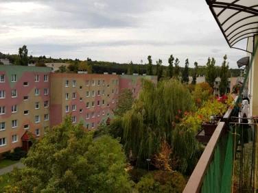 Mieszkanie Zielona Góra