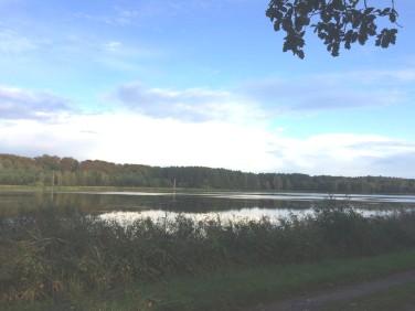 Działka rekreacyjna Szczecin