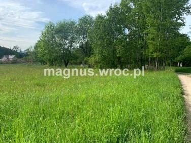Działka rolna Marianówka