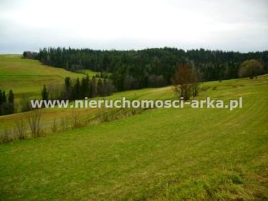 Działka rolna Rabka-Zdrój