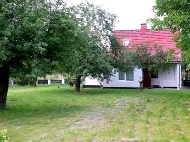 Dom Jazy
