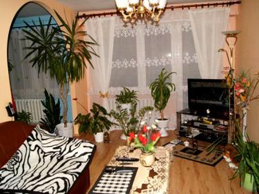 Mieszkanie Stryków