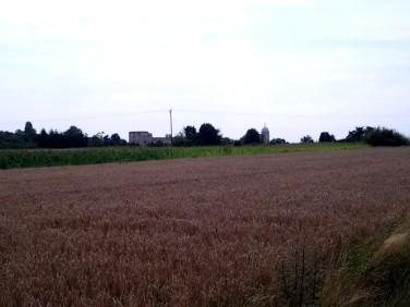 Działka rolna Janowiec