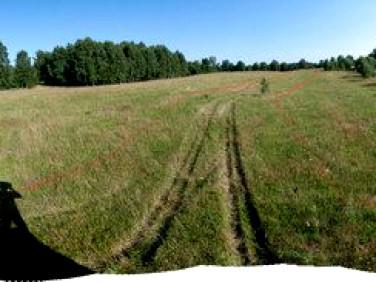 Działka rolna Salino