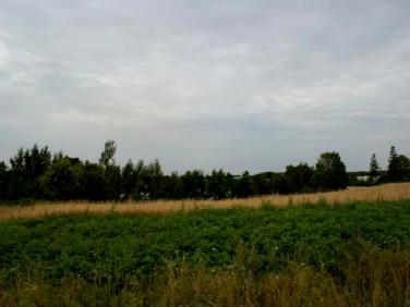 Działka rolna Gniewino