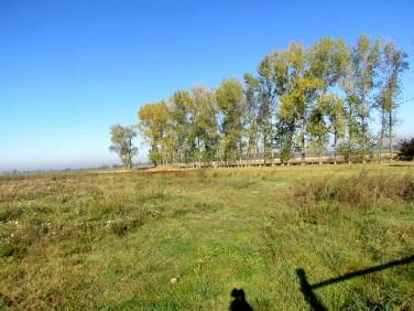 Działka rolna Bukowie