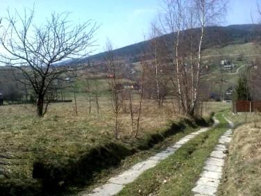 Działka rolna Las