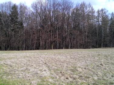 Działka budowlano-rolna Cieszyn
