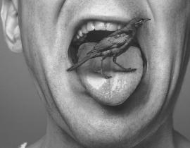 mężczyzna ze szpakiem na języku