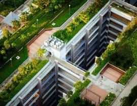 Ekologiczna zmiana_zielone dachy